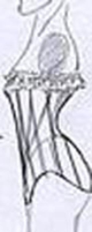Corsettype101