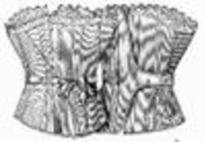 1893morningcorset